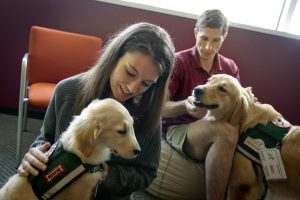 students pet therapy puppies